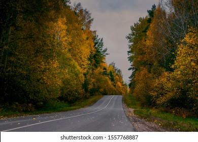 Empty autumn asphalt road filmed on a gray cloudy day