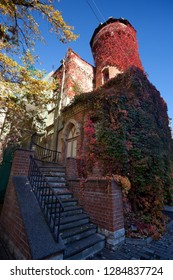 empty background - medieval gothic house, carpet of many red and green leaves cover walls