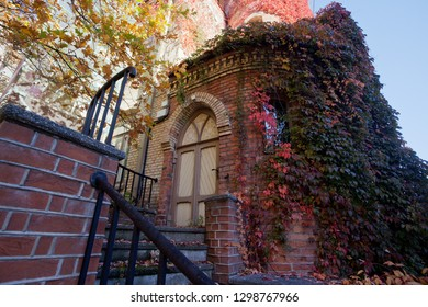 empty background - medieval gothic house door, carpet of many red and green leaves cover walls