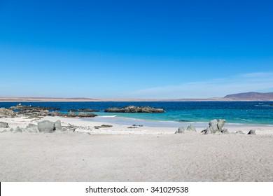 Empty beach, blue sea, white sand, beach umbrella - nice scenario in northern Chile in Bahia Inglesa area.