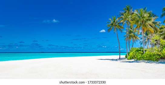 Empty beach scene. Sea sand sky concept with tropical nature foliage as palm tree forest. Amazing tranquility and inspiration beach landscape. Beautiful sunny summer mood, beach landscape copy space