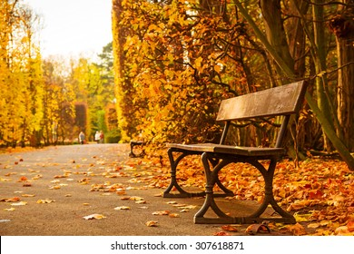 Empty bench in the autumnal park, Poland