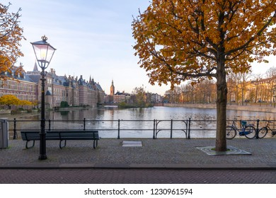 Empty bench beside a autumnal color tree facing the Hofvijver, Binnenhof, Dutch parliament reflected on the pond in a freezing autumn season, Netherlands