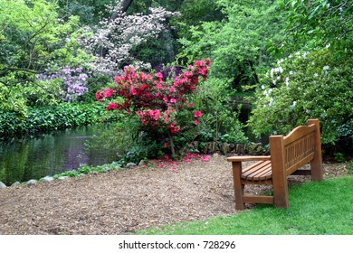 Empty bench by the pond in the Asian garden with spring flowers