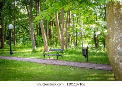 Empty bench in a green park