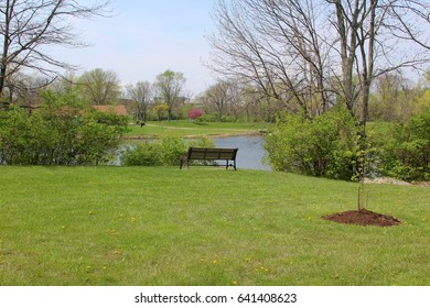 The empty bench in the lawn landscape overlooking the park lake.