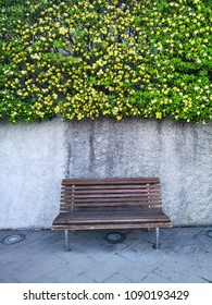 empty bench near wall