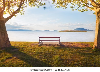 Empty bench on the shore of lake Balaton framed by trees with beautiful view of the lake's north coast