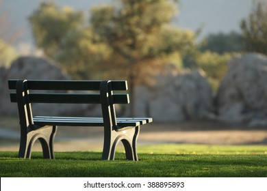 An empty bench at the park.