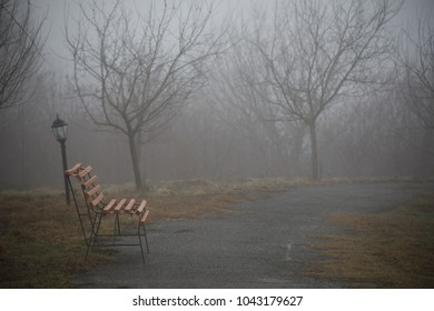 Empty bench at park near pond by foggy day, minimalistic cold season scene. bench at the lake in the fog in the forest. Bench near lake with fog. Azerbaijan Nature. Caucasus