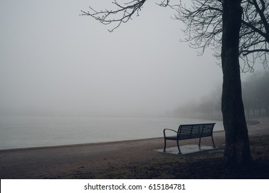 Empty bench at park near pond by foggy day, minimalistic cold season scene