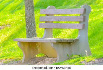 Empty bench at park in spring time