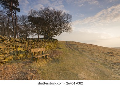 Empty bench, empty place in the beautiful evening glow from the setting sun, in Bradgate Park, Leicestershire, England.