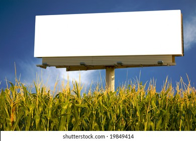 Empty billboard in a field of corn for you to advertise your message
