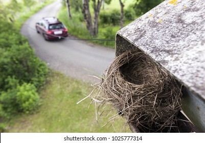 Empty bird nest in gutter at house corner at spring. Single car passing.