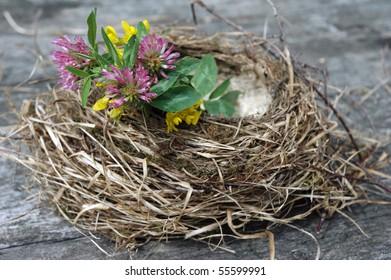 empty birdnest with flowers