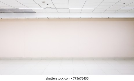 Empty brick wall. Background for plain text or product