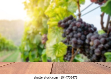 Empty brown wooden table on blur grapes vineyard background. Blank Copy space for your text and product montage