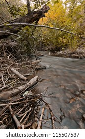 Empty can in a creek