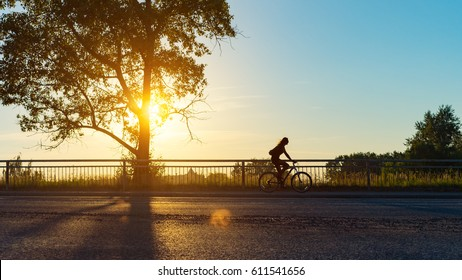 Empty city road with woman rider silhouette at summer sunset. Silhouette and shadow of tree in the city park at sunset. Background with copy space area and golden colors.
