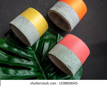 Empty colorful modern geometric concrete planters with green tropical palm tree on black background, top view. Beautiful painted concrete pots.