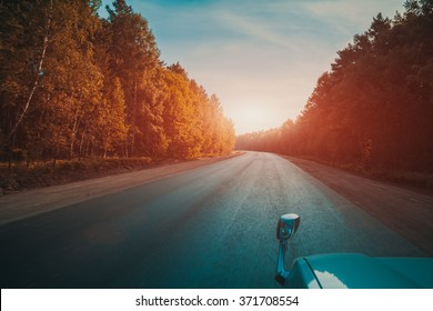 Empty country road, autumn trees, car mirror, view from moving car, vintage color filter