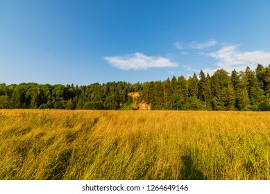 empty countryside landscape in autumn with fields and meadows and rare trees in background, late autumn in agriculture