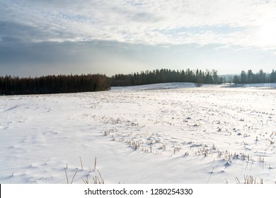Empty Countryside Landscape in Sunny Winter Day with Snow Covering the Ground, Abstract Background with Deep Look - Concept of Fun and Joy