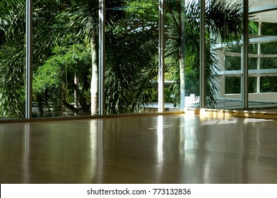 Empty dance studio, in a modern building, with large window overlooking sunlit tropical palm trees