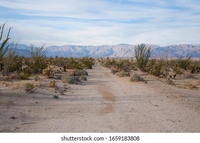 Empty desert  road in Anza Borrego Desert, Californian