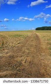 Empty dirt road in a field
