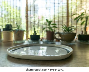 Empty dish with cactuses on the wooden table on a sunny day for montage product display