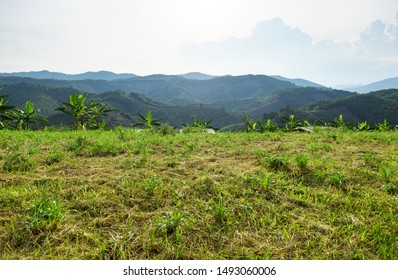 Empty dry cracked swamp reclamation soil, land plot for housing construction Green meadow and mountains, beautiful views and beautiful blue sky with fresh air Land for sales landscape concept.