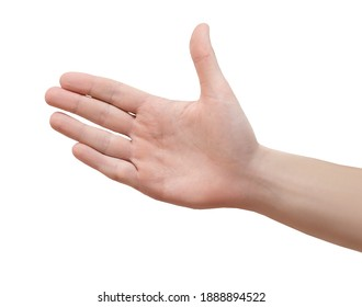 The empty female hand makes a gesture like holding something isolated in hand behind a white background.