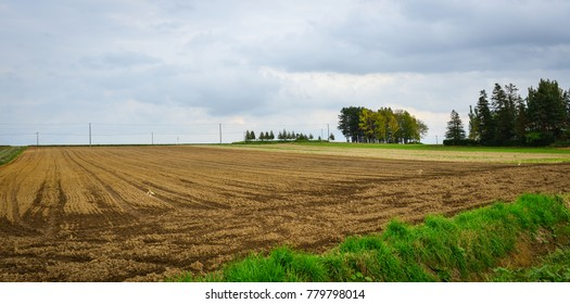 Empty field at autumn in Furano, Hokkaido, Japan.