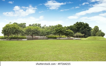 Empty field at the nice and peaceful comfortable great garden panorama under lovely blue sky