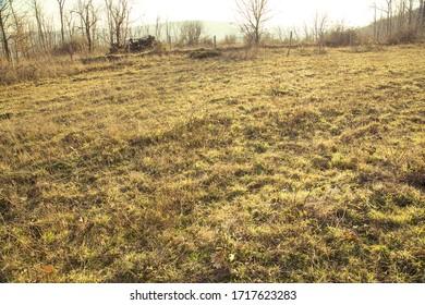 empty field under autumn sun