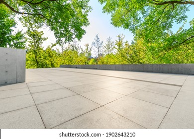 Empty floor and green forest background.