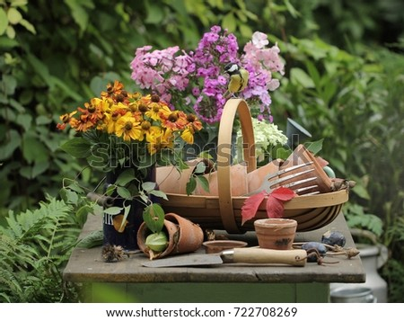 Empty flower pots of red clay in the basket and titmouse & Empty Flower Pots Red Clay Basket Stock Photo (Edit Now) 722708269 ...
