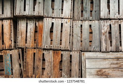 empty fruit crates stapled for next harvest in Italy