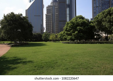 Empty green grass with modern city buildings backgrounds in Shanghai