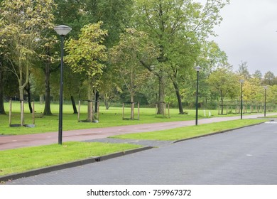 Empty green park with road path in autumn season