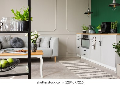 Empty green wall with copy space in elegant kitchen with white furniture,plants and coffee machine in stylish small apartment with grey couch