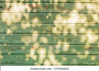 Empty green wathered old wooden table background texture with sunlight on surface, top view.