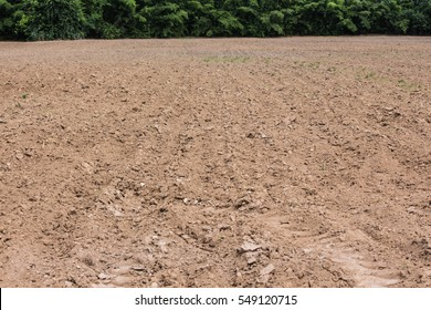 empty ground soil preparetion