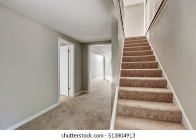Empty hallway interior with gray walls and staircase with carpet floor. Northwest, USA