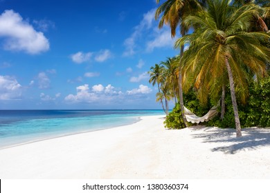 A empty hammock on a paradise beach with turquoise sea, palm trees and fine sand on the Maldives