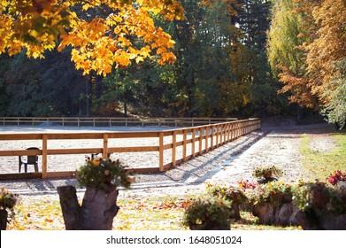 Leere Reitarena mit Holzzaun im Herbst. Horizontales, farbiges Außenbild mit spektakulärem Ahorn für die Herbstsaison auf Hintergrund