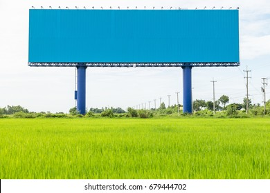 Empty large blue advertising billboard in green rice field. for design and advertisement concept