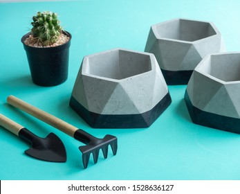 Empty modern geometric concrete planters with green cactus plant and garden tool set. Beautiful  concrete pots.